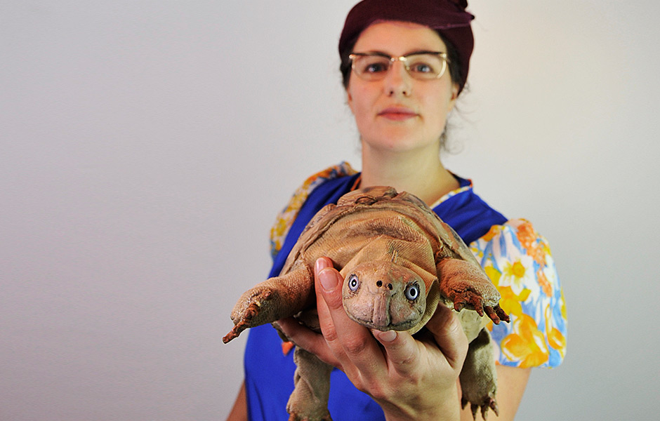 Die Schildkröte hat Geburtstag (Jesko Döring)