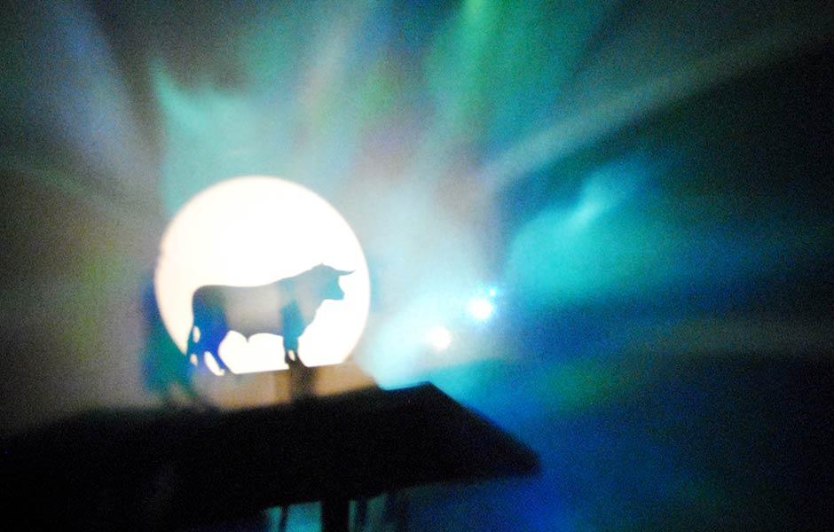 Licht aus, Licht an: Ein Stier.